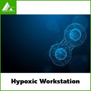 Hypoxic Workstation